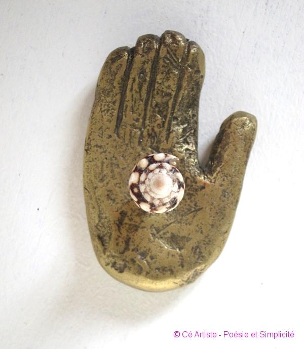 le coquillage dans la main