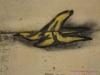 IMG_1862